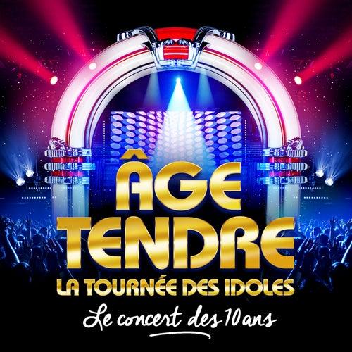 Age Tendre, La Tounée des Idoles - Le Coffret des 10 Ans de Various Artists