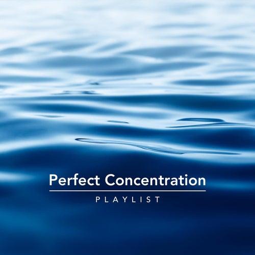 Perfect Concentration Playlist von Various Artists