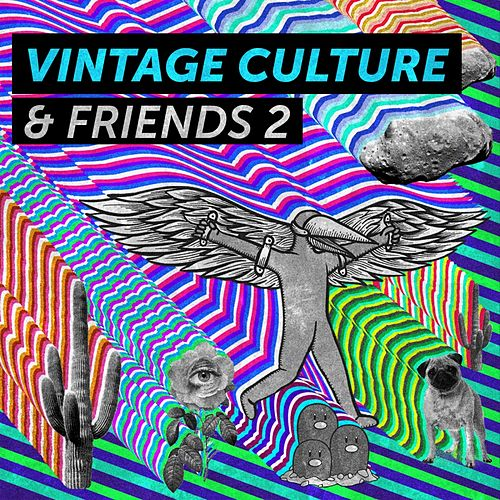 Vintage Culture & Friends 2 de Vintage Culture