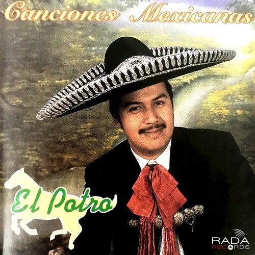 Canciones Mexicanas von El Potro