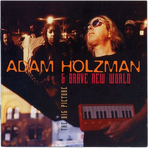 The Big Picture by Adam Holzman