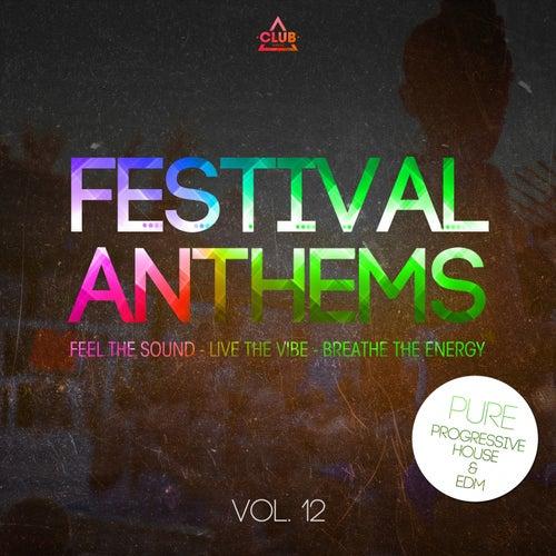Festival Anthems, Vol. 12 (Pure Progressive House & Edm) de Various Artists