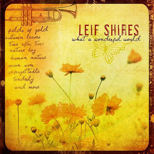 What A Wonderful World by Leif Shires