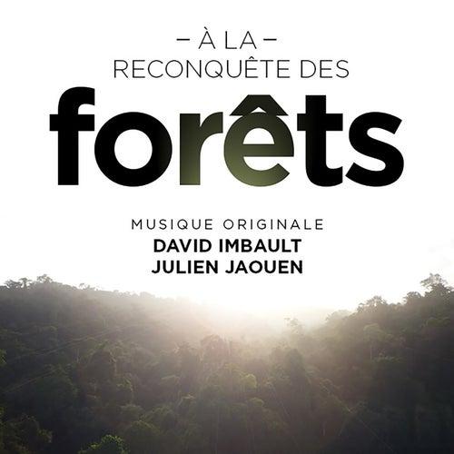 La forêt nourricière des Sundarbans (À la reconquête des forêts) by Julien Jaouen
