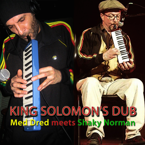 King Solomon's Dub by Various Artists