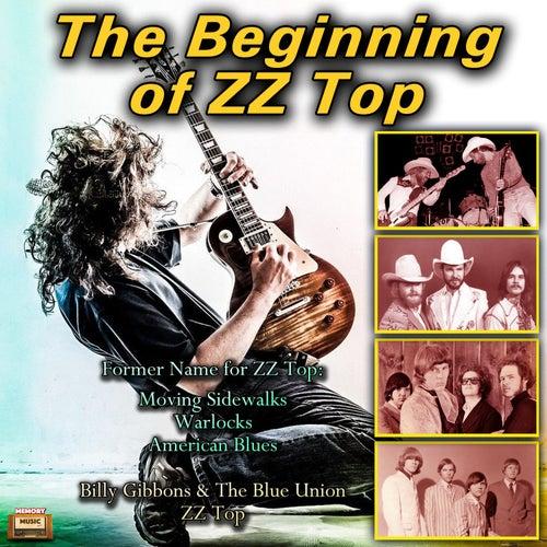 The Beginning of ZZ Top von Various Artists