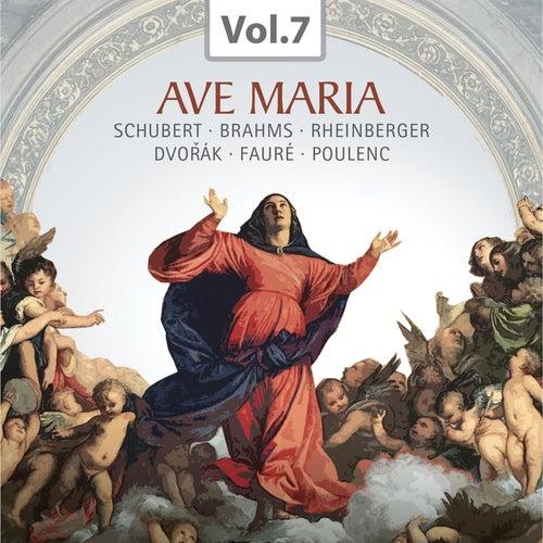 Ave Maria (Praise of the Virgin Mary Through the Centuries), Vol. 7 von Various Artists