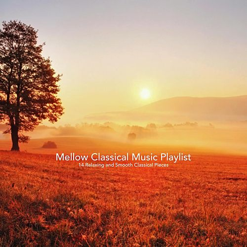 Mellow Classical Music Playlist:14 Relaxing and Smooth Classical Pieces de Various Artists