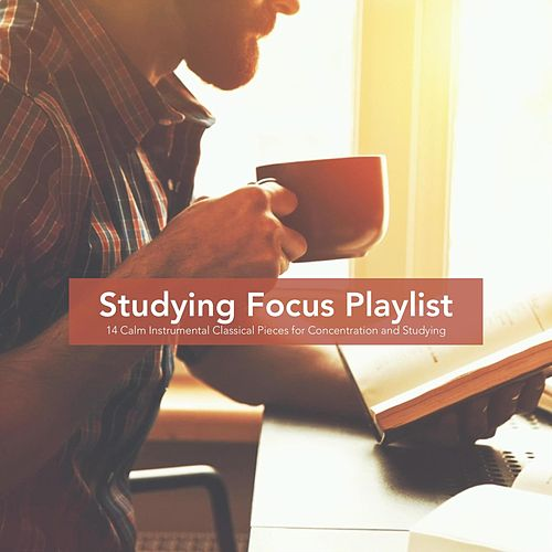 Studying Focus Playlist: 14 Calm Instrumental Classical Pieces for Concentration and Studying von Various Artists