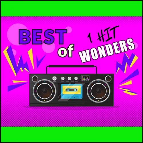Best of 1 Hit Wonders by Various Artists