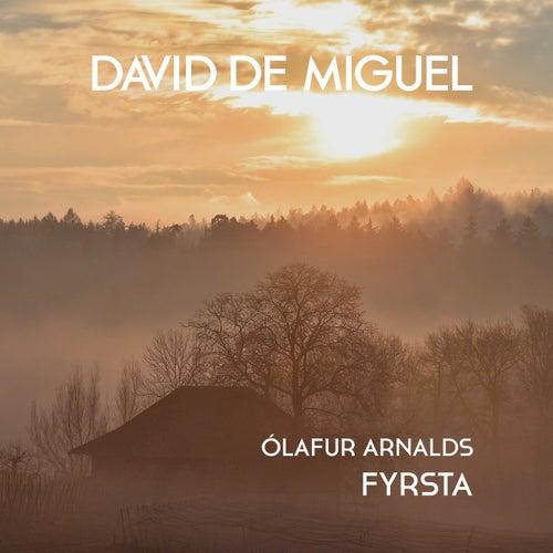 Fyrsta by David de Miguel