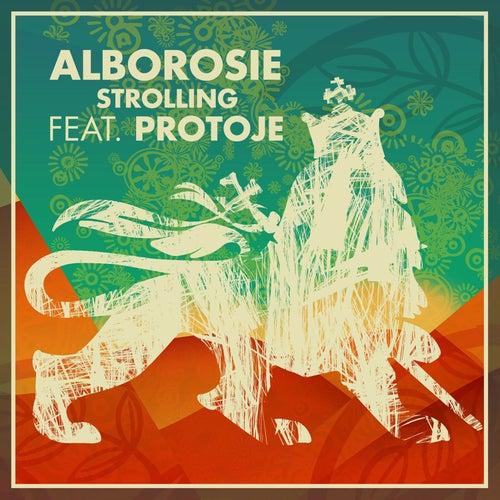 Strolling by Alborosie