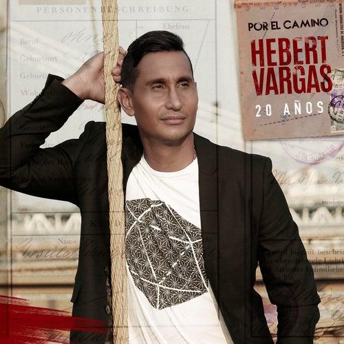 20 Años por el Camino de Hebert Vargas
