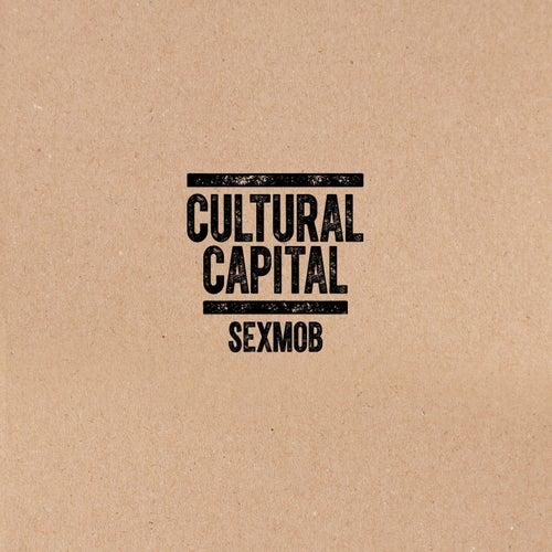 Cultural Capital de Sex Mob