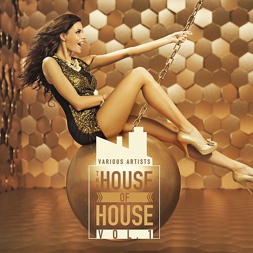 The House of House, Vol. 1 de Various Artists