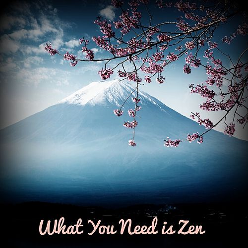 What You Need Is Zen by Relaxing Spa Music