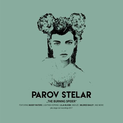 The Burning Spider von Parov Stelar