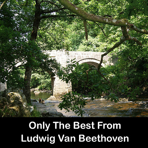Only The Best From Ludwig Van Beethoven by Ludwig van Beethoven