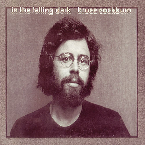 In The Falling Dark de Bruce Cockburn