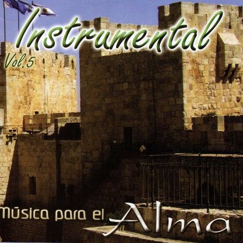 Música Para el Alma, Vol. 5 (Instrumental) de God Concept