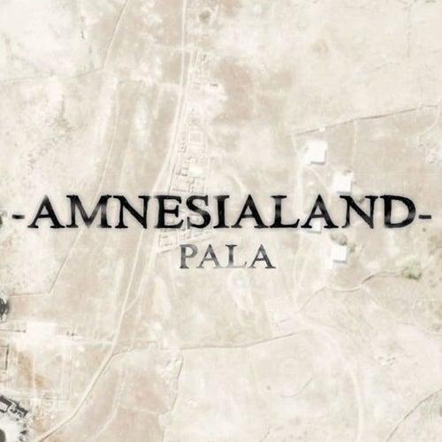 Amnesialand de Pala
