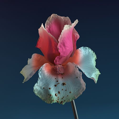 Skin: The Remixes von Flume
