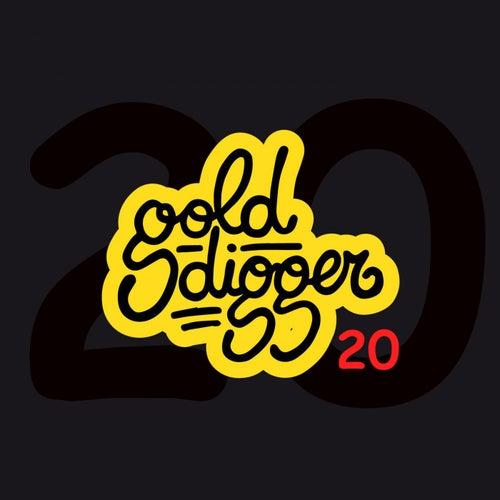 Gold Digger, Vol. 20 de Various Artists