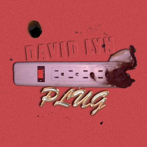 Plug by David Lyn