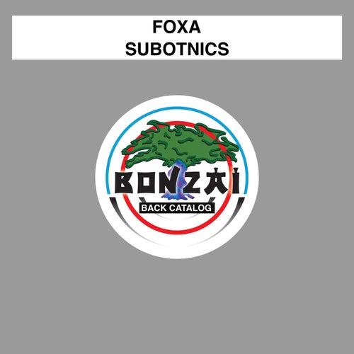 Subotnics by Foxa