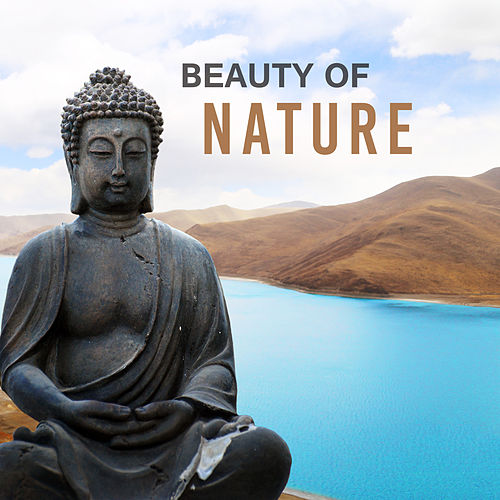 Beauty of Nature – Meditation Music, Nature Sounds, Stress Relief, Zen, Relaxation Music, Training Yoga, Tranquility & Harmony de Meditación Música Ambiente