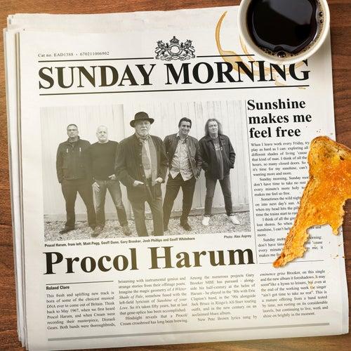 Sunday Morning (Edit) de Procol Harum