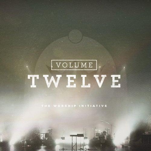 The Worship Initiative, Vol. 12 by Shane & Shane