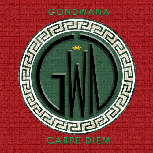 Carpe Diem von Gondwana