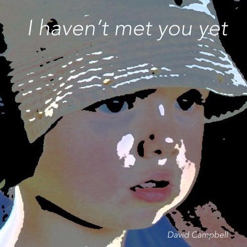 I Haven't Met You Yet von David Campbell