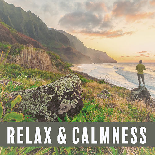 Relax & Calmness – Soft New Age to Rest, Soothing Music to Calm Down, Pure Mind, Deep Sleep, Peaceful Melodies for Relaxation by Sounds Of Nature