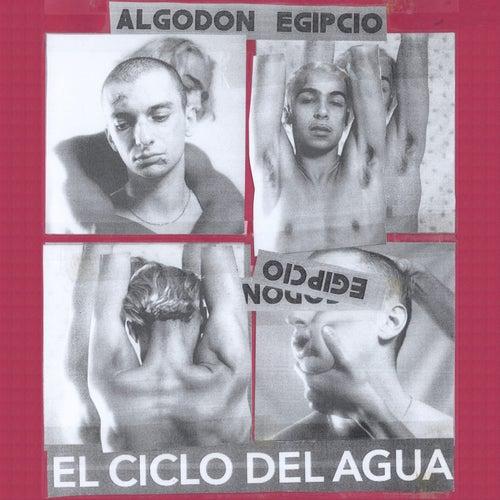 El Ciclo del Agua by Algodón Egipcio