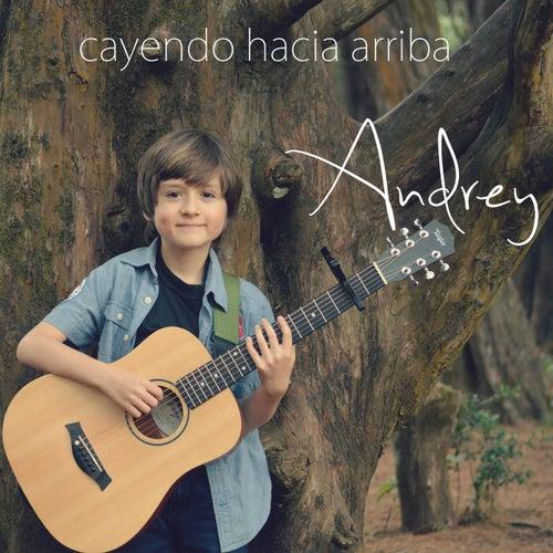 Cayendo Hacia Arriba von Andrey