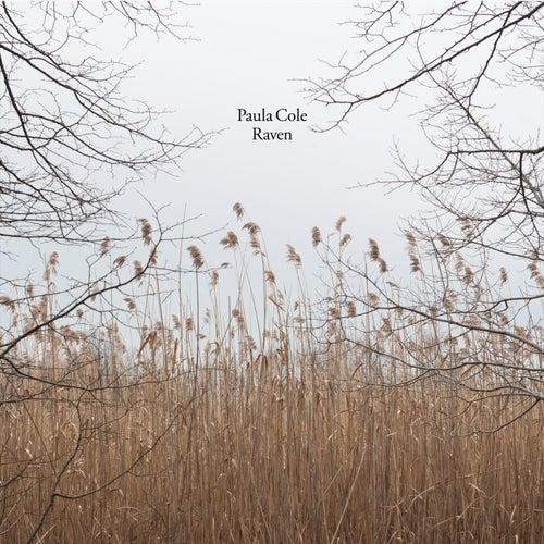Raven von Paula Cole