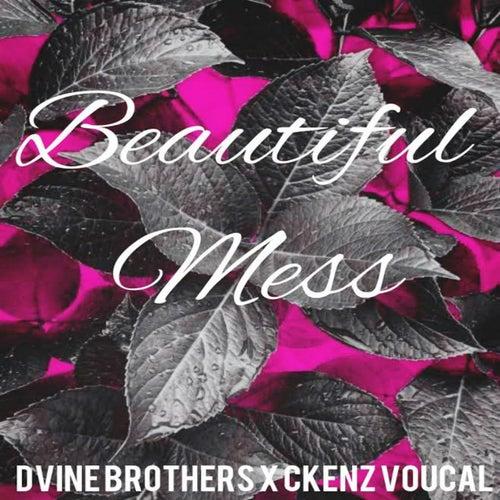 Beautiful Mess de Dvine Brothers