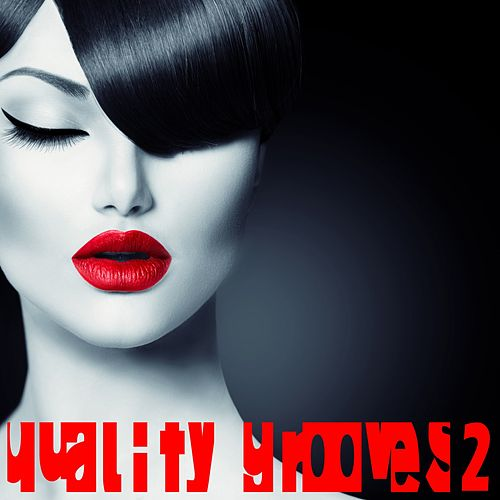Quality Grooves 2 (Future and Tropical House Selection) von Various Artists