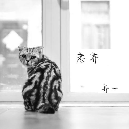 Mr Qi de Seven Qi