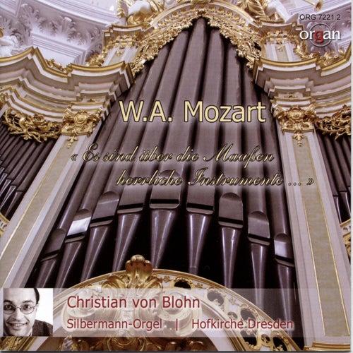 Wolfgang Amadeus Mozart und die Orgel (Gottfried Silbermann-Orgel, Hofkirche Dresden) von Christian von Blohn