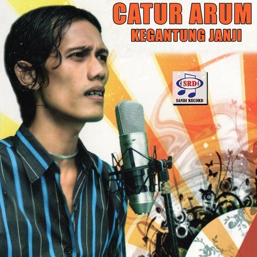 Catur Arum Kegantung Janji by Various Artists