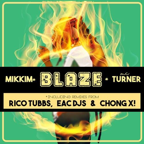 Blaze by Mikkim