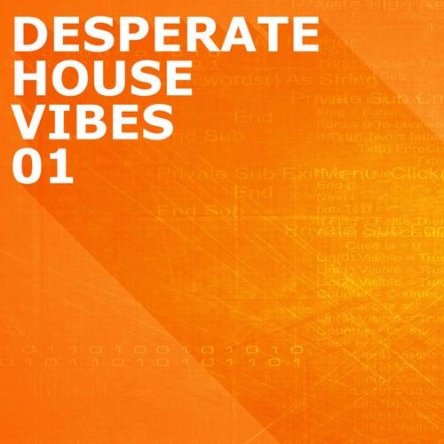 Desperate House Vibes, Vol. 1 de Various Artists