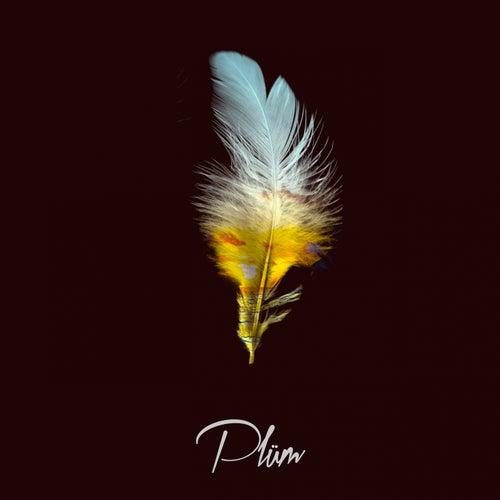 Paradise by Plüm