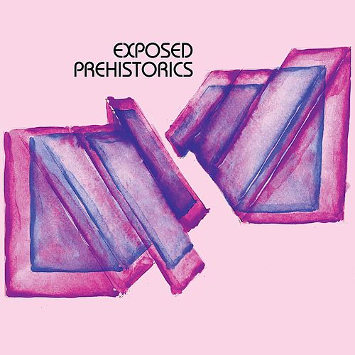 Exposed Prehistorics by Colossal Yes