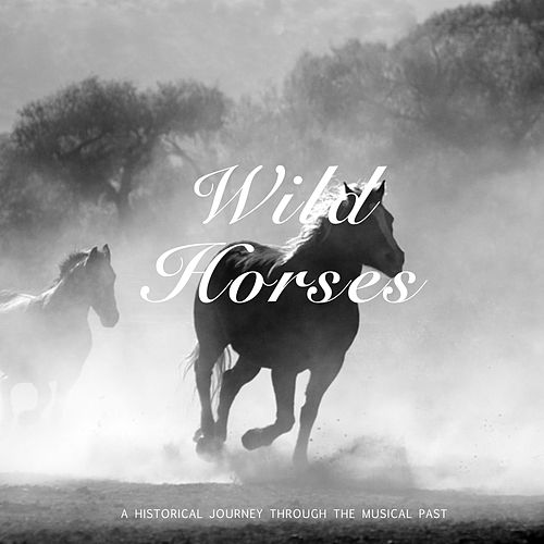 Wild Horses by Jo Ann Greer