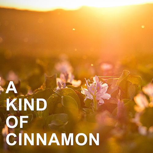 A Kind of Cinnamon de Various Artists