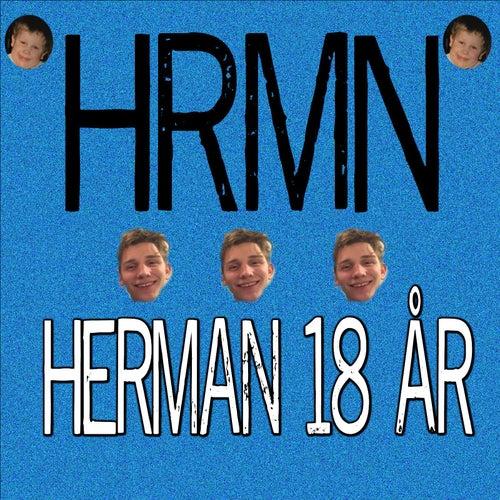 Herman 18 år by Hrmn